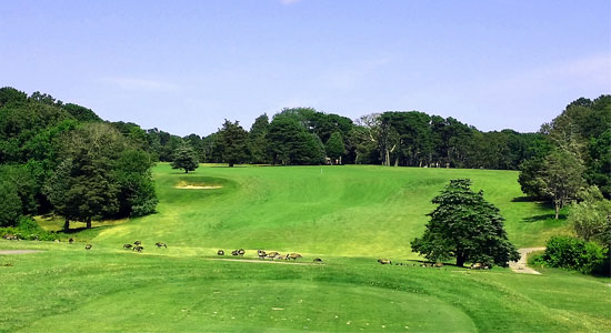 Master planning gardner gerrish for Gardner golf course